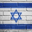 Israel flag on a textured brick wall — Stock Photo
