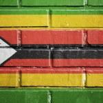 Zimbabwe flag on brick wall — Stock Photo #34229179