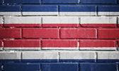 Costa rica flag on brick wall — Stock Photo