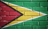 Guayana flag on brick wall — Stock Photo