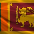 Sri Lanka flag blowing in the wind — Stock Photo