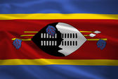 Swaziland flag blowing in the wind — Stock Photo