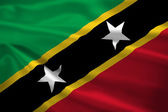 Saint Kitts and Nevis flag blowing in the wind — Stock Photo