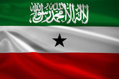 Somaliland flag blowing in the wind — Foto Stock