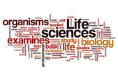 Life sciences biology concept background — Stock Photo