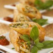 Fried Spring Rolls — Stock Photo #12013469