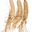 Dried KoreGinseng — Stock Photo #22009535