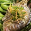 Steamed Fish on Bed of Bok Choi — Stock Photo