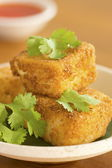 Breaded Fried Silken Tofu w Chili Oil — Stock Photo