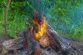 Beautiful burning logs — Stock Photo