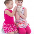 Two little girlfriends stroking rabbit — Stock Photo #43522331