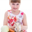 little girl with adorable rabbit — Stock Photo #44206937