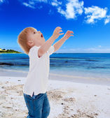 Holiday at the seaside — Stock Photo