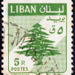Stock Photo: LEBANON - CIRC1959: stamp printed in Lebanon shows Cedar of Lebanon, circ1959.