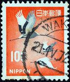 JAPAN - CIRCA 1966: A stamp printed in Japan shows Manchurian (Japanese) Cranes, circa 1966. — Stock Photo