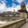 Guardian lion of the Chain Bridge, Budapest, Hungary - Stock Photo