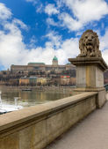 Guardian lion of the Chain Bridge, Budapest, Hungary — Stock Photo
