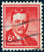 "USA - CIRCA 1954: A stamp printed in USA from the ""Liberty"" issue shows the 26th President of the United States Theodore ""Teddy"" Roosevelt, circa 1954. — Stock Photo"
