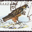 "Stock Photo: GREECE - CIRC1979: stamp printed in Greece, from ""endangered bird species"" issue shows Eleonora's Falcon (Falco eleonorae), circ1979."