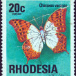 RHODESIA - CIRCA 1974: A stamp printed in Rhodesia from the &amp;quot;Butterflies&amp;quot; issue shows a Charaxes varanes butterfly, circa 1974. - Stock Photo