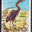 "GREECE - CIRCA 1979: A stamp printed in Greece, from the ""endangered bird species"" issue shows a Purple Heron (Ardea purpurea), circa 1979. — Stock Photo"