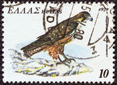 "GREECE - CIRCA 1979: A stamp printed in Greece, from the ""endangered bird species"" issue shows an Eleonora's Falcon (Falco eleonorae), circa 1979. — Stock Photo"