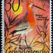 "CZECHOSLOVAKIA - CIRCA 1967: A stamp printed in Czechoslovakia from the ""Water Birds"" issue shows a Black-tailed Godwit (Limosa limosa) bird, circa 1967. - Stock Photo"