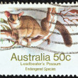 AUSTRALIA - CIRCA 1981: A stamp printed in Australia shows a Leadbeater's possum, circa 1981. — Stock Photo #12630382