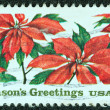 USA - CIRCA 1985: A stamp printed in USA issued for Christmas showing poinsettia plants, circa 1985. — Stock Photo