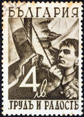 "BULGARIA - CIRCA 1942: A stamp printed in Bulgaria from the ""Work and Joy"" issue shows a young man hoisting the flag, circa 1942. — Stock Photo"