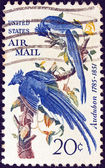 USA - CIRCA 1967: A stamp printed in USA shows Columbia Jays by John James Audubon, circa 1967. — Stock Photo