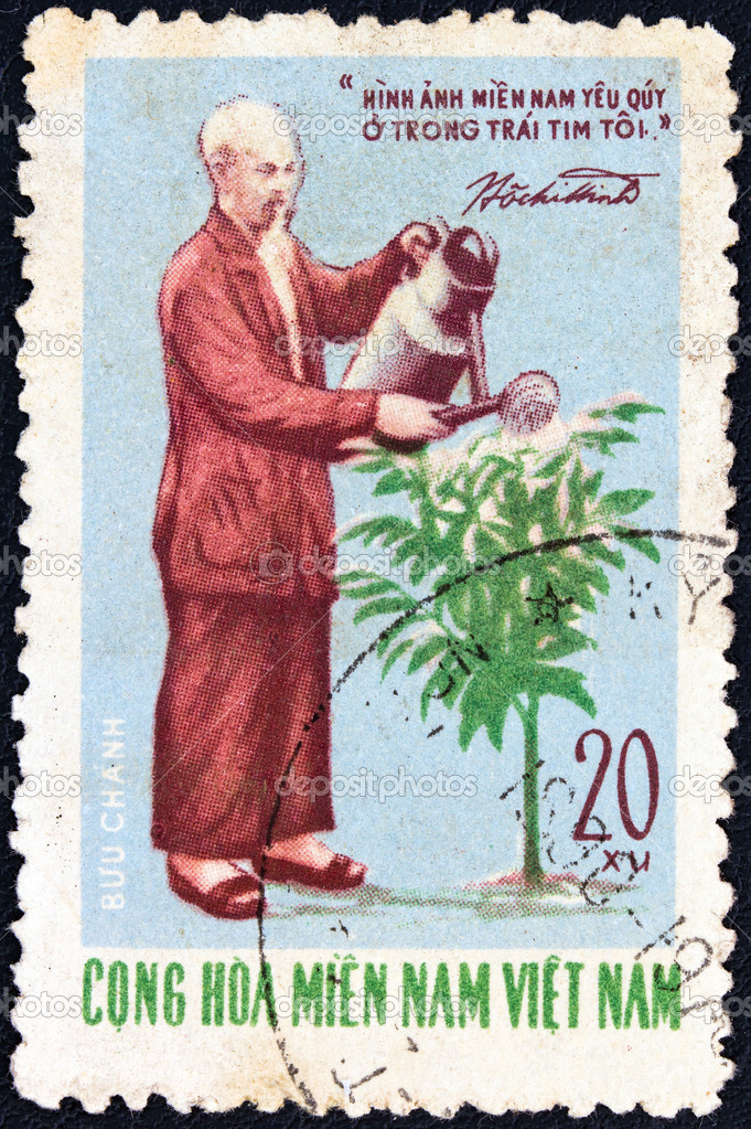 VIETNAM - CIRCA 1970: A stamp printed in North Vietnam issued for the 80th Birth anniversary of Ho Chi Minh shows Ho Chi Minh watering Kainito plant, circa 1970.  Stock Photo #13097549