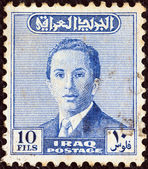 IRAQ - CIRCA 1954: A stamp printed in Iraq shows a portrait of King Faisal II, circa 1954. — Stock Photo