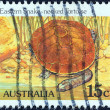 """AUSTRALIA - CIRCA 1981: A stamp printed in Australia from the """"Wildlife"""" issue shows an Eastern snake-necked tortoise, circa 1981. — Stock Photo"""