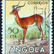 "ANGOLA - CIRCA 1953: A stamp printed in Angola from the ""Angolan fauna"" issue shows an Impala, circa 1953. — Stock Photo"
