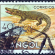 "ANGOLA - CIRCA 1953: A stamp printed in Angola from the ""Angolan fauna"" issue shows a crocodile, circa 1953. - Stock Photo"