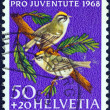 "SWITZERLAND - CIRCA 1968: A stamp printed in Switzerland from the ""Pro juventute charity stamps "" issue shows Eurasian jay birds, circa 1968. — Stock Photo"