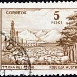 ARGENTINA - CIRCA 1959: A stamp printed in Argentina shows Tierra del Fuego, circa 1959. — Stock Photo #14018698