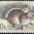 "CZECHOSLOVAKIA - CIRCA 1967: A stamp printed in Czechoslovakia from the ""Fauna of Tatra National Park"" issue shows a Eurasian Red Squirrel (Sciurus vulgaris), circa 1967. — Stock Photo"