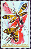 "RWANDA - CIRCA 1973: A stamp printed in Rwanda from the ""Rwanda Insects"" issue shows a pair of Archibracon fasciatus, circa 1973. — Foto de Stock"