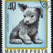 Royalty-Free Stock Photo: HUNGARY - CIRCA 1974: A stamp printed in Hungary from the \