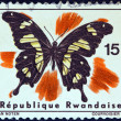 "RWANDA - CIRCA 1965: A stamp printed in Rwanda from the ""Rwanda butterflies"" issue shows a Papilio hesperus butterfly, circa 1965. — Stock Photo"