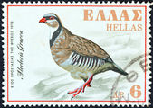 GREECE - CIRCA 1970: A stamp printed in Greece issued for the Nature Conservation Year shows a Rock Partridge (Alectoris Graeca), circa 1970. — Stock Photo