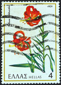 "GREECE - CIRCA 1978: A stamp printed in Greece from the ""Greek flora"" issue shows a Lilium heldreichii flower, circa 1978. — Stock Photo"
