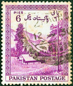 "PAKISTAN - CIRCA 1954: A stamp printed in Pakistan from the ""7th anniversary of Independence"" issue shows Kaghan Valley, circa 1954. — Stock Photo"