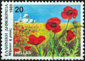 "GREECE - CIRCA 1989: A stamp printed in Greece from the ""Wild Flowers"" issue shows corn poppy (Papaver rhoeas), circa 1989. — Stock Photo"
