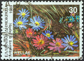 """GREECE - CIRCA 1989: A stamp printed in Greece from the """"Wild Flowers"""" issue shows Anemone blanda (Grecian Windflower), circa 1989. — Stock Photo"""