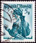 "AUSTRIA - CIRCA 1948: A stamp printed in Austria from the ""Provincial Costumes"" issue shows a woman from Salzburg Pinzgau, circa 1948. — Stock Photo"