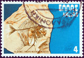 GREECE - CIRCA 1979: A stamp printed in Greece issued for the 7th International Congress of Mediterranaen Neogene shows a fossil moonfish (Mene psarianosi), circa 1979. — Stock Photo