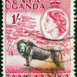 KENYA UGANDA TANGANYIKA - CIRCA 1954: A stamp printed in Kenya Uganda Tanganyika shows a lion and Queen Elizabeth II, circa 1954. - Stock Photo